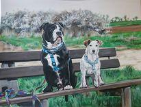 Bulldogge, Wiese, Frühling, Terrier