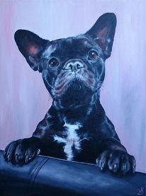 Hund, Schwarz, Bulldogge, Rosa