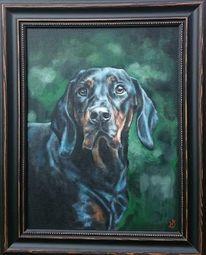 Hund, Jäger, Jagdhund, Portrait