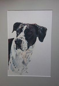 Hund, Portrait, Malerei,