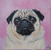 Hund, Portrait, Mops, Malerei