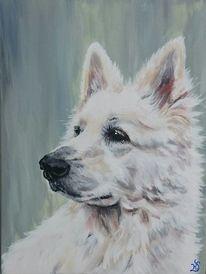 Hund, Schäferhund, Weiß, Malerei
