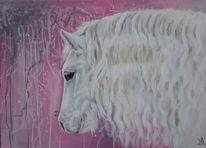 Pferdekopf, Weiß, Rosa, Pferde