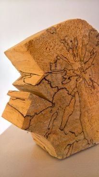 Skulptur, Plastik, Holz, Braunschweig
