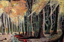 Wald, Mystik, Lichtstrahlen, Herbstwald