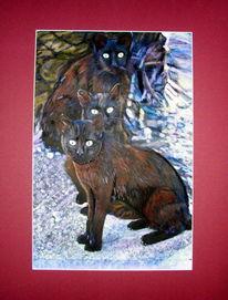 Griechenland, Portrait, Katze, Haustier
