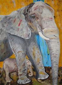 Tiergarten, Sozial, Baby elefant, Familie