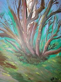 Wald, Landschaft, Natur, Moor