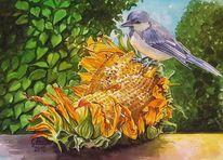 Odenwald, Sonnenblumen, Aquarellmalerei, Meise