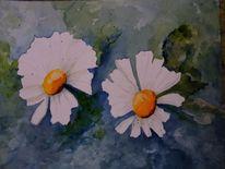 Blüte, Margerite, Abstrakt, Sommer