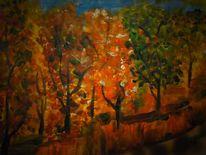 Sonnenuntergang, Herbstbäume, Licht, Schatten