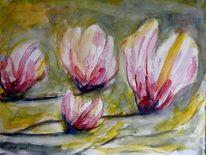 Blumen, Magnolien, Pflanzen, Frühling