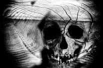Verwandlung, Tragödie, Ursprung, Digitale kunst