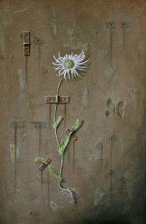 Margerite, Naturstein, Realismus, Schmetterling