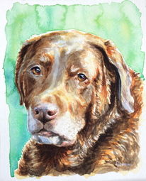 Hund, Tiere, Aquarellmalerei, Labrador