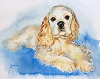Aquarellmalerei, Blau, Portrait, Hund