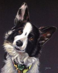 Aquarellmalerei, Gemälde, Hund, Tiere