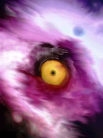 Augen, Skurril, Abstrakt, Digital