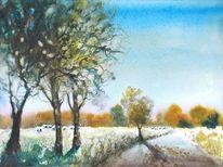 Weiden, Natur, Landschaft, Baum