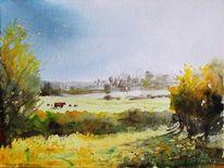 Sonnenlicht, Landschaft, Wiese, Kuh