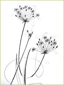 Tusche, Schwanenblume, Federzeichnung, Pflanzen