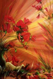 Roter mohn, Rot, Blumen, Mohn