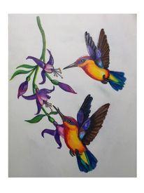 Vogel, Tropisch, Fantasie, Zeichnungen