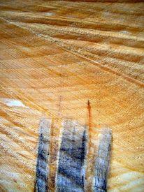 Ästhetik, Baum, Mit blaufäulnis, Struktur