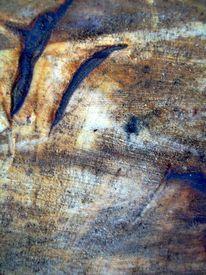 Mit blaufäulnis, Gefällten baumes, Ästhetik, Malerei
