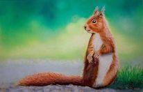 Eichhörnchen, Pastellmalerei, Tiermalerei, Tiere