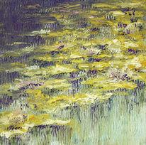 Teich, Wasser, Spiegelung, Seerosen