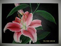 Blumen, Acrylmalerei, Pflanzen, Lilie