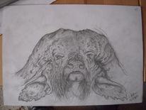 Tiere, Zeichnung, Büffel, Wasserbüffel