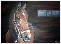 Pferde, Licht, Realistisch fuchsstute, Schatten