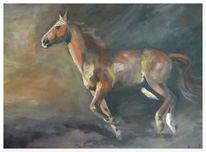 Schwung, Pferde, Licht, Schatten