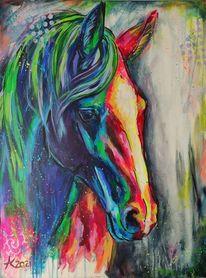 Reiten, Regenbogen, Portrait, Pferde