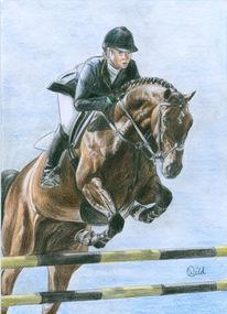 Pferde, Springreiter, Springreiten, Zeichnung