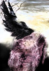 Himmel, Fliegen, Dunkel, Stein