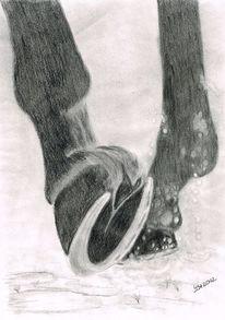 In bewegung, Grafit, Huf, Pferdezeichnung