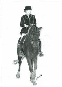Pferdeportrait, Pferdezeichnung, Tierzeichnung, Pferde