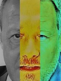 Gesicht, Umfrage, Synthese, Politische farbenlehre