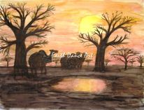 Afrika, Kamel, Sahel, Spiegelung