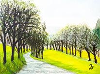 Baum, Aquarellmalerei, Obstbaum, Allee