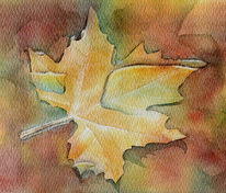 Ahorn, Ahornblatt, Herbst, Aquarellmalerei