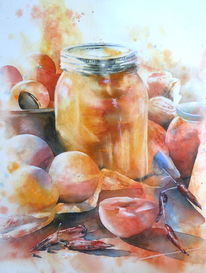 Aprikose, Ernte, Aquarellmalerei, Erntezeit