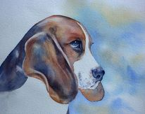 Aquarellmalerei, Hund, Hundeaugen, Beagle