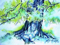 Buch, Hütebuche, Aquarellmalerei, Beech tree