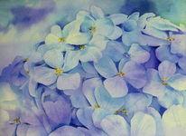 Violett, Blumen, Aquarellmalerei, Blau