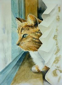 Tiere, Aquarellmalerei, Fenster, Kater