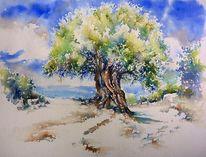 Olivenbaum, Aquarellmalerei, Griechenland, Kefalonia